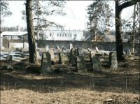 Rakov Jewish Cemetery - Another Interior View