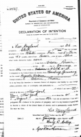 Leo Mayland Declaration of Intent